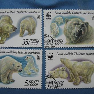 СССР 1987 год Белые медведи