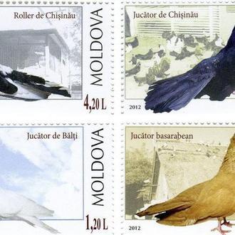 Молдова 2012 Голуби Фауна **