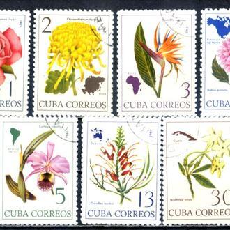 Куба. Цветы (серия) 1965 г.