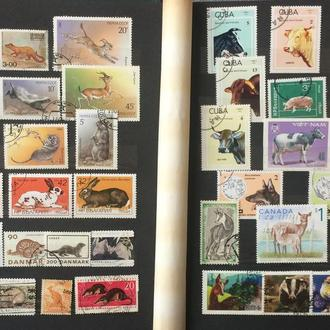 Альбом с марками, фауна и флора - 385 марок
