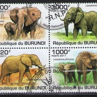 Бурунди 2011 Фауна Слоны африканские сцепка кварт 9,7 евро
