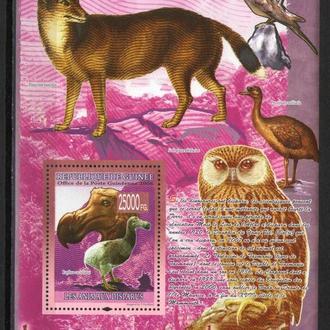 Гвинея 2008 ** Фауна Птицы БЛ 10-00 евро MNH
