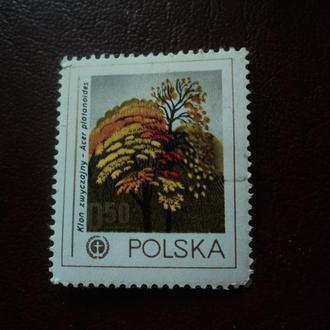 Польша. Флора.