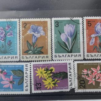 Болгария, Флора,гаш.