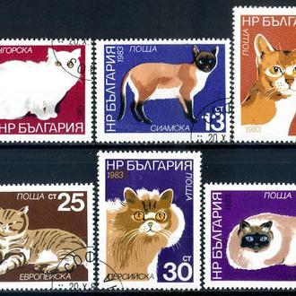 Болгария. Коты (серия) 1983 г.