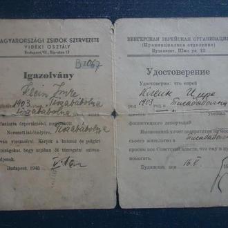 ИУДАИКА удостоверение 1945 г Еврея из гетто