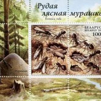 Беларусь 2002 Муравей. Блок MNH