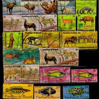 Фауна.Бурунди Рыбы,животные и птицы.Описание.