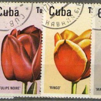 Куба Флора Цветы Растения Полная Серия