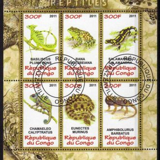 Конго Фауна Земноводные Ящерицы Лягушки Змеи Блок