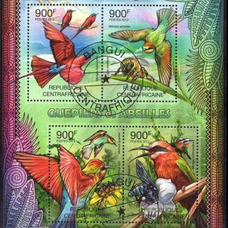 Африка Фауна Птицы Попугаи Пернатые Блок