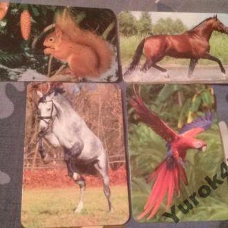 Календарики Фауна Животные Звери Птицы
