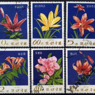Корея Флора Цветы Растения Полная Серия