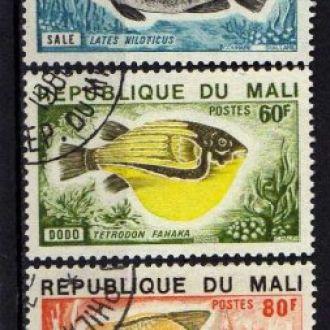 Мали Фауна Морские обитатели Рыбы Серия Редкая