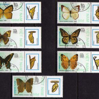 Монголия Фауна Насекомые Бабочки Жуки Серия