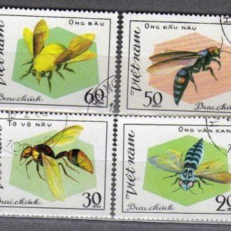 Вьетнам Фауна Насекомые Жуки Пчёлы