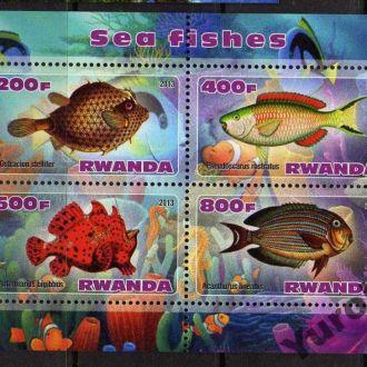 Руанда Фауна Морские обитатели Рыбы Чистый