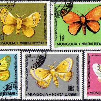 Монголия Фауна Насекомые Бабочки Жуки Редкие