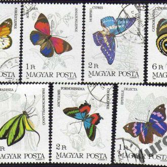 Венгрия Фауна Насекомые Бабочки Жуки Редкие