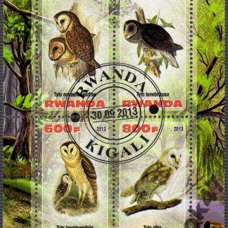 Руанда Фауна Птицы Пернатые