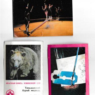 Календарики Цирк безопасность медведь 1982 87 б/у