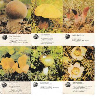 Календарики 1986 Грибы, Латвия, 11 шт.