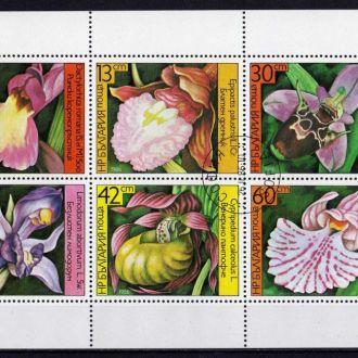 Болгария Флора Цветы Растения Полная Серия Сцепка