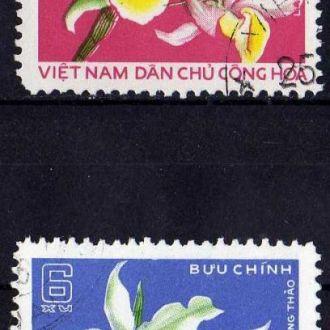 Вьетнам Флора Цветы Растения