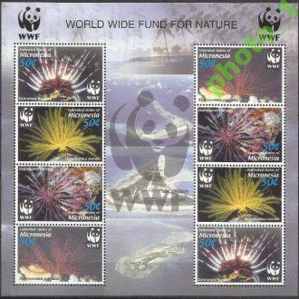 Микронезия 2005 фауна морская ВВФ Клб**