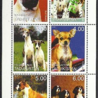 Таджикистан 1999 фауна собаки 6м.**