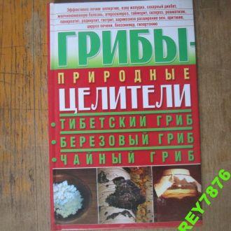 Грибы природные целители. тибетский чайный