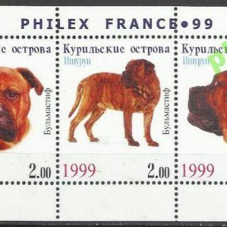 Россия Курильские о-ва Итуруп 1999 фауна собаки бу