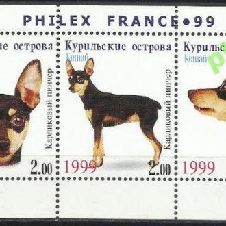 Россия Курильские о-ва Кетай 1999 фауна собаки кар