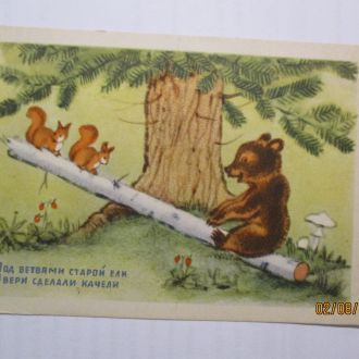 открытка под ветвями старой ели 1954 г