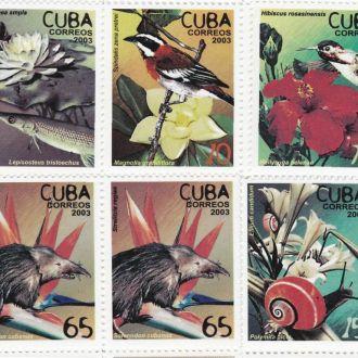 Куба 2003 ФАУНА ПТИЦЫ РЫБА УЛИТКА ФЛОРА 5 марок**