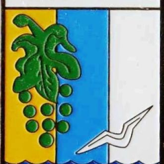 Знак геральдика герб. Базар'янка