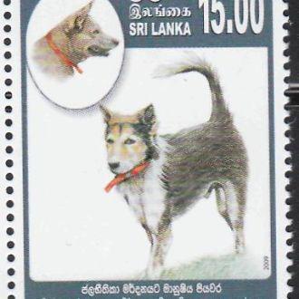 Шри-Ланка 2009 ФАУНА СОБАКА ВЕТЕРИНАРИЯ 1 марка**