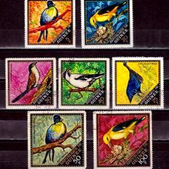 Фауна.Гвинея Птицы 7м  Г12Б