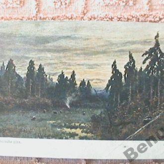 Германия старая открытка чистая