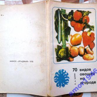 Шуин К.А. Семьдесят видов овощей на огороде