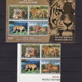 Фауна.Тигр. Бангладеш