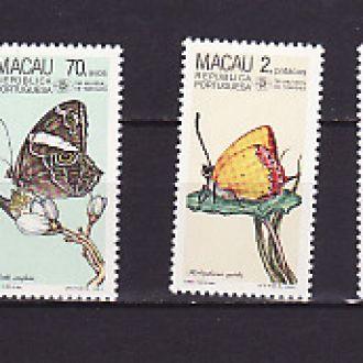 Фауна. Бабочки. Макао