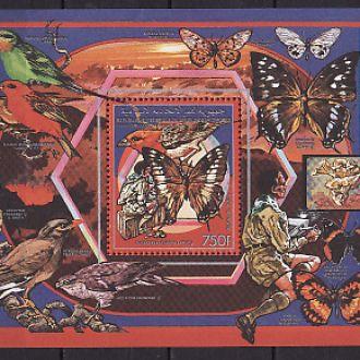 Фауна . Бабочки. Коморы