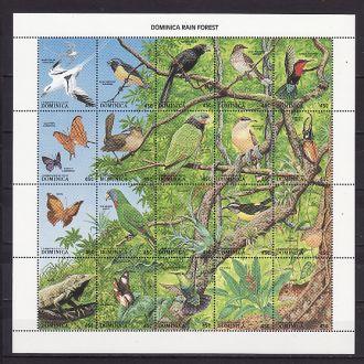 Фауна. Птицы. Доминика