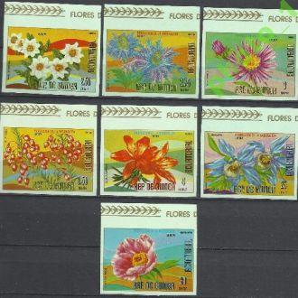 Гвинея Экватор. 1977 флора Европы орхидея 7м.б/з**