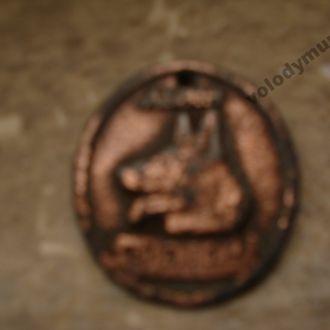 Собача медаль - реєстрація