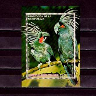 Фауна.Гвинея Экв. Птицы. Австралия 1блок Г30