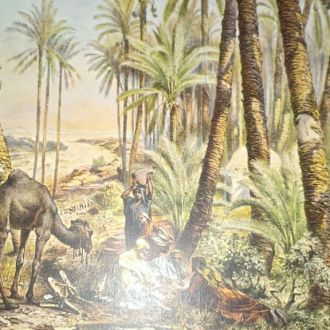 Открытое письмо Финиковое дерево
