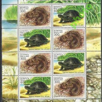 Беларусь 2003 фауна черепаха Клб**