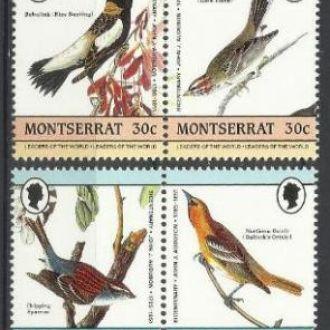 Монтсеррат 1985 фауна птицы Одубон 8м.**